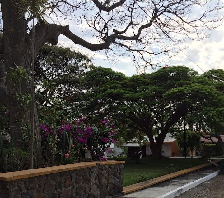Habitación Jacarandas