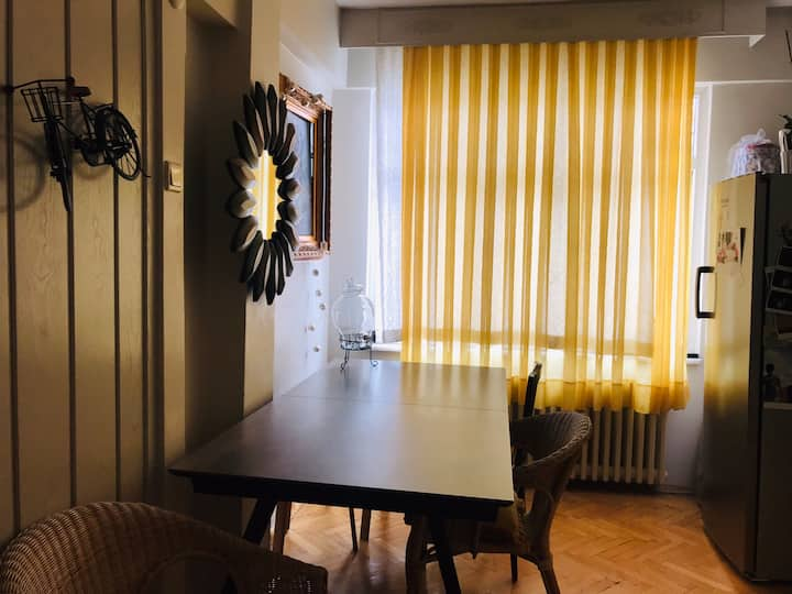 Comfortable Flat in the bakırköy center