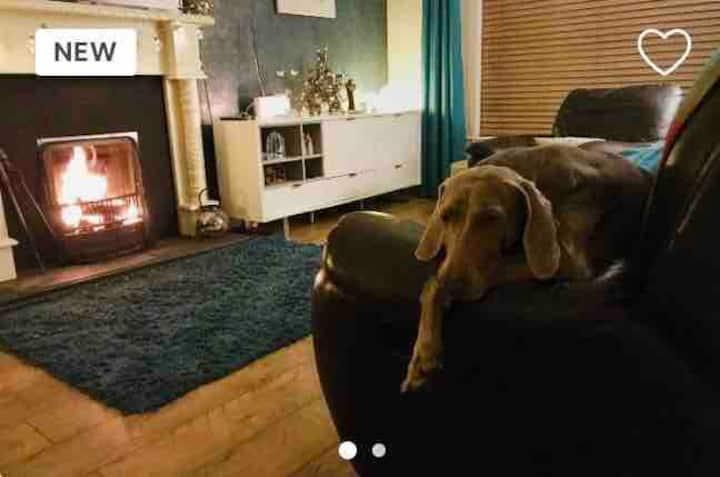 House near Derry Airport,nature walks dog friendly
