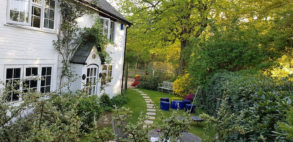Rose Cottage Burley, dog & family friendly
