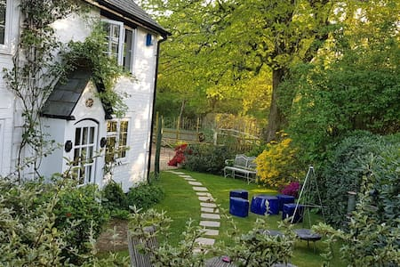 Rose Cottage Burley, dog & family friendly