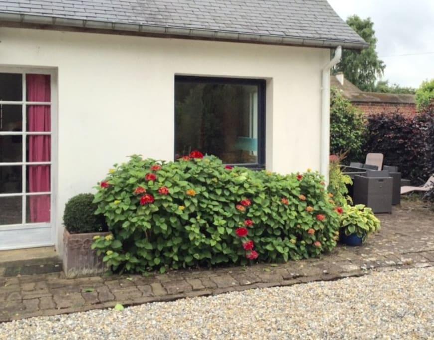 Des arbustes florifères partout autour de la maison