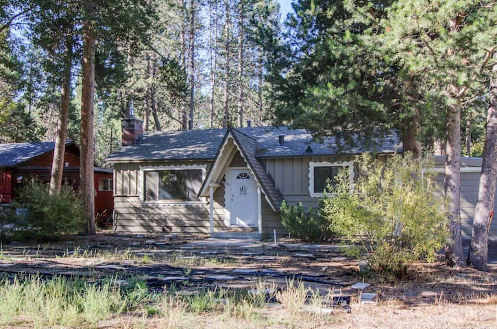 Cozy home in a quiet spot w/enclosed yard - great for family vacations!