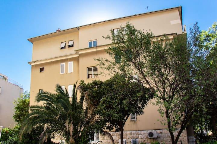 Lugo Apartment 1