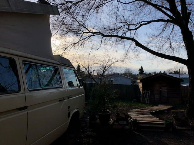 Backyard camp out in a VW Vanagon