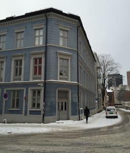 Cozy studio in the heart of Oslo - Oslo