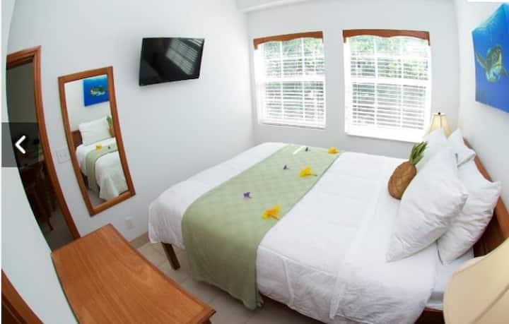 Modern 'one bedroom' walking distance to beach GB