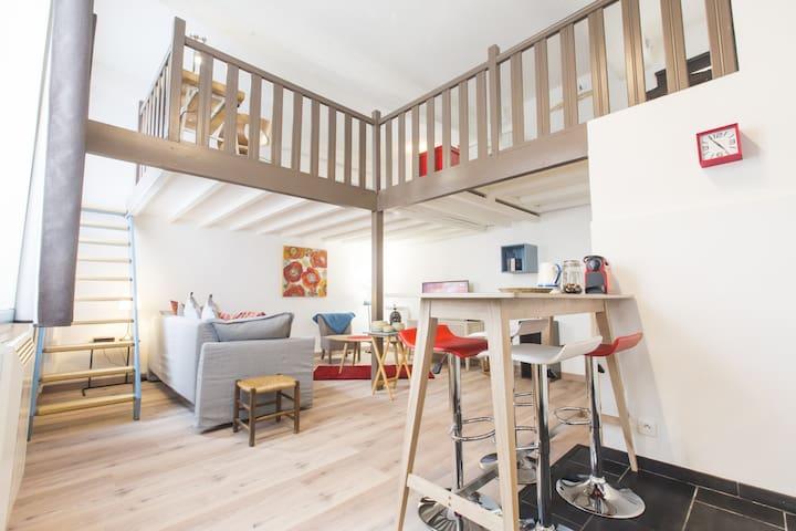 Charming Duplex Croix-Rousse - Lyon - Lejlighed
