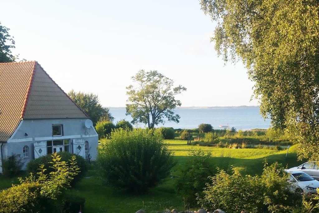 Schöne Unterkunft direkt an der Ostsee (Blick aus dem Wohnzimmer)