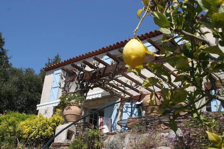 Charming, spacious house, best view - Rayol-Canadel-sur-Mer - Casa