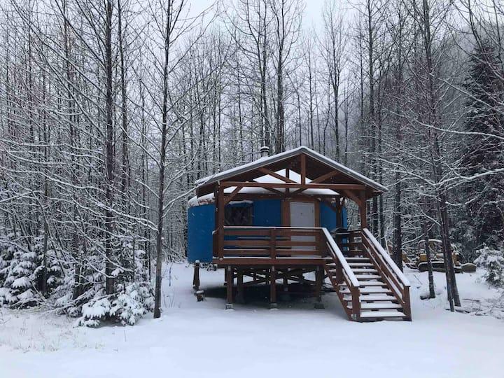 AK Oceanfront Camping Yurt