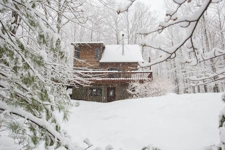 Cozy 2BR House in the Forest, Near Woodstock - Willow - Huis