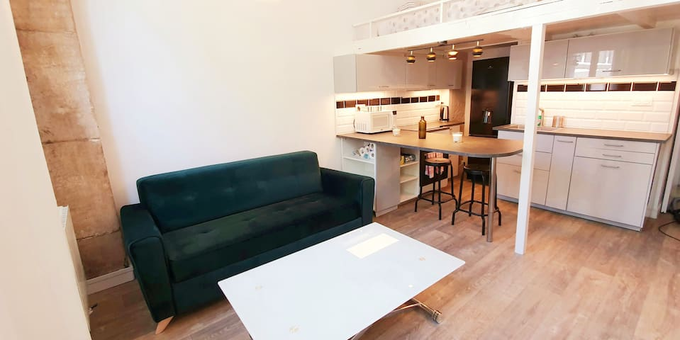 Beautiful new flat for 2 to 4 guest in Paris 13