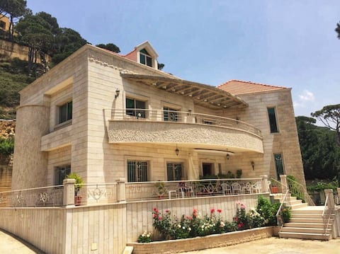 Special Apartment with amazing view in Btekhnay