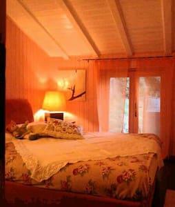 Mansardina suite Nido del bosco - Edolo - บ้าน