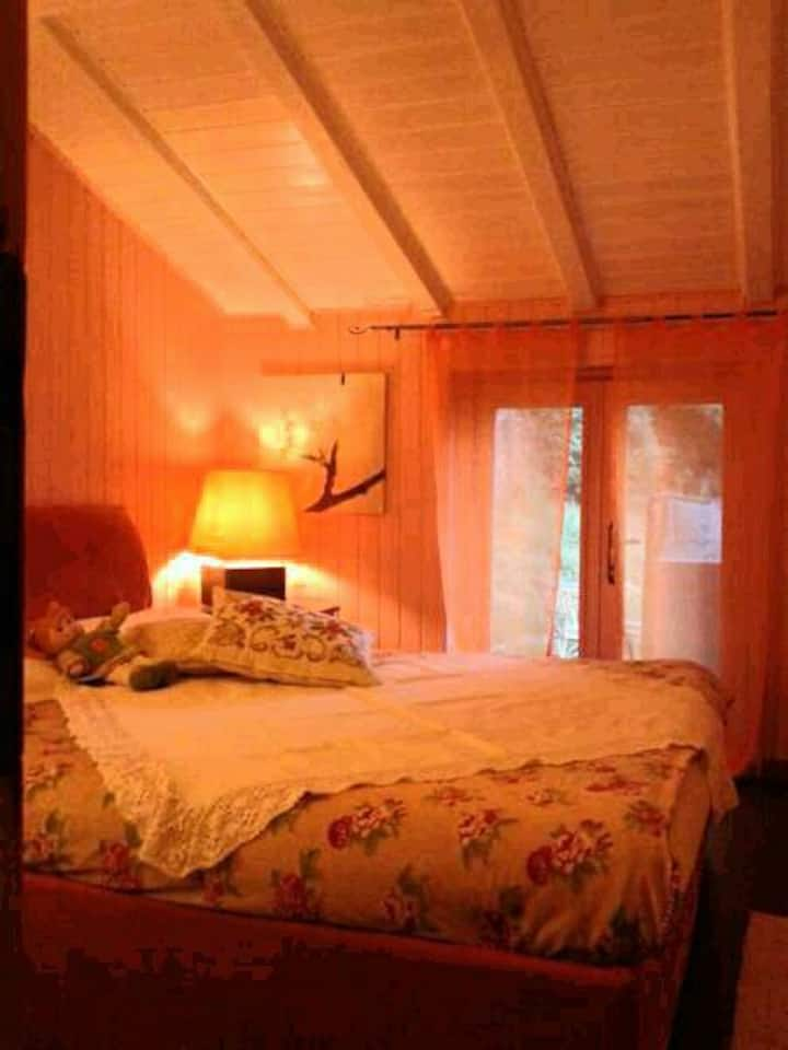 Mansardina suite Nido del bosco