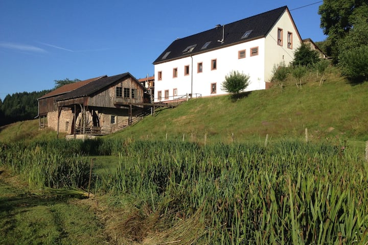 Comfortable Apartment in Meisburg Eifel near Watermill