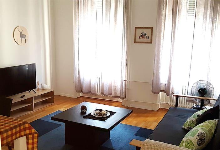 2.5 Rooms (1BR) Apartment-Steinvorstadt-71-2OG