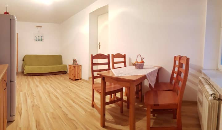 Apartament w CENTRUM Zakopanego