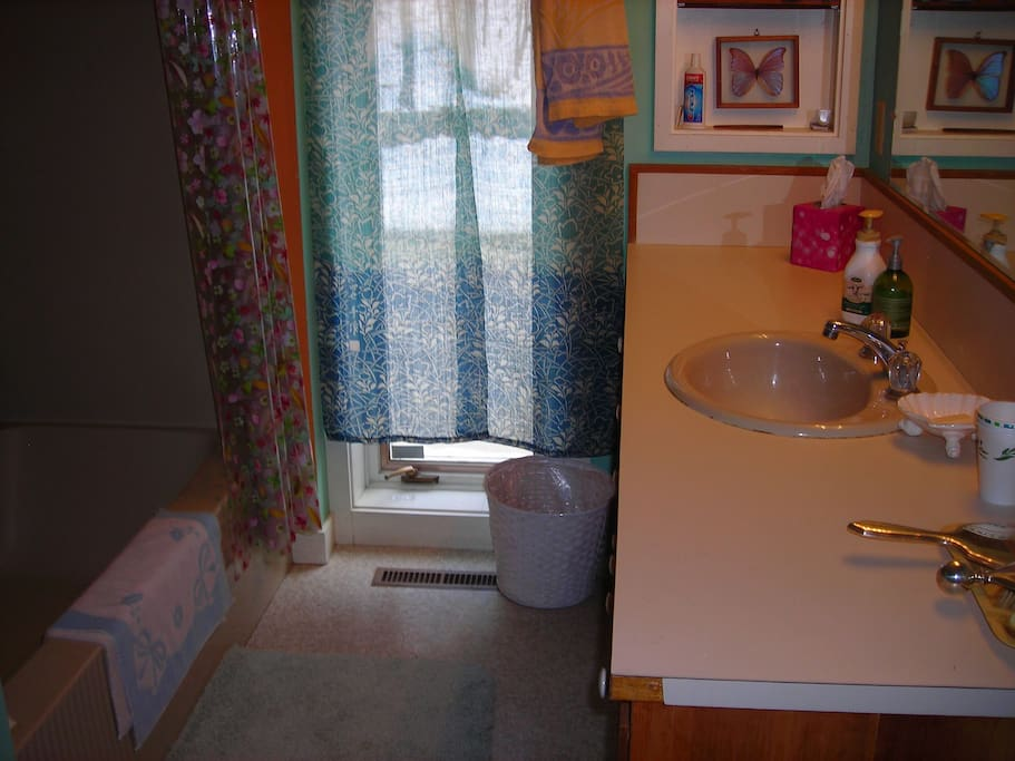 Bathroom for Master Suite.  Tub and shower, large mirror over sink.