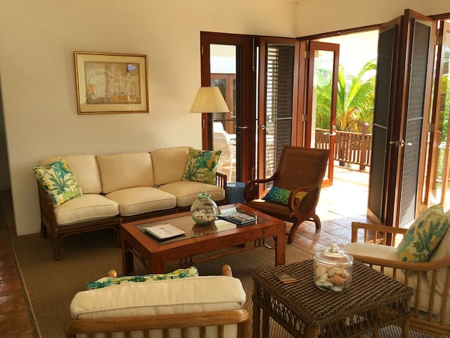 Coconut Palm Villa Living Room