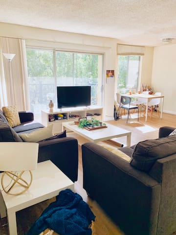 1 bedroom in sunny apartment close to campus