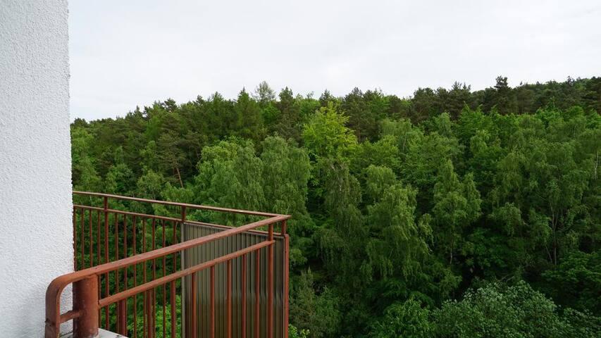 Pawlicki Apartment near Opera Leśna