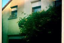 maison ensoleillée avec jardin