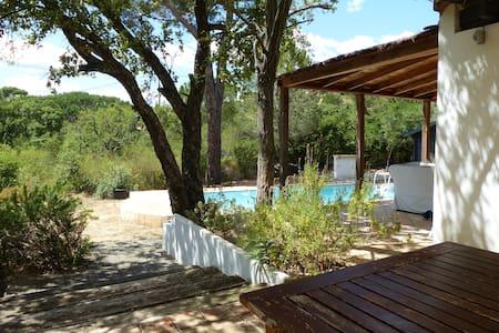 villa st maxime calme piscine deco actuel - Sainte-Maxime