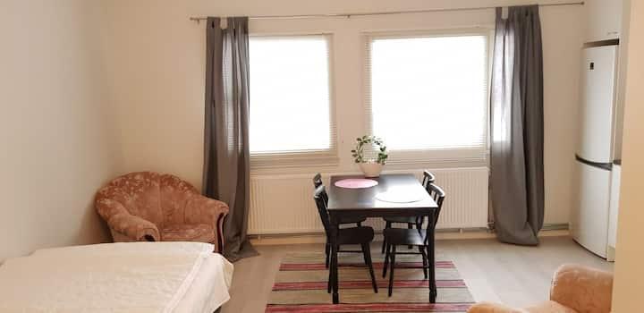Yksiö noin 30n2 hieno kunto ja valoisa asunto