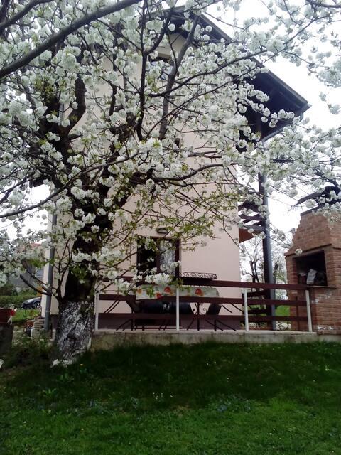 Будинок відпочинку Dugi Gaj, Šagudovec 22 A