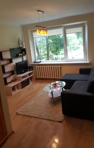 Apartament in the heart of Anyksciai