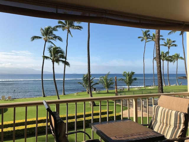 Panoramic views of South Maui, Haleakala, & West Maui Mountains. Fantastic spot to watch the famous Maui sunrise, sunset, people surfing, watching the honu (green sea turtle), and whales breaching during whale season!