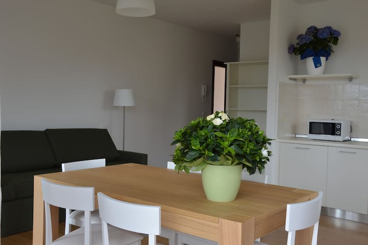 Meridiana Apartment with one bedroom