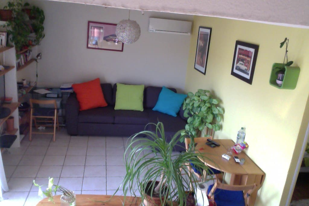 salon spacieux avec télé et canapé de couchage