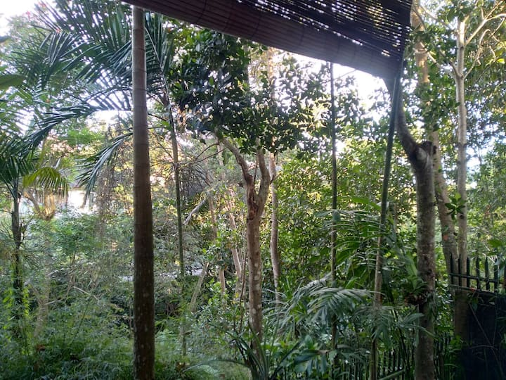 Jungle views house 8 minute from Ubud center