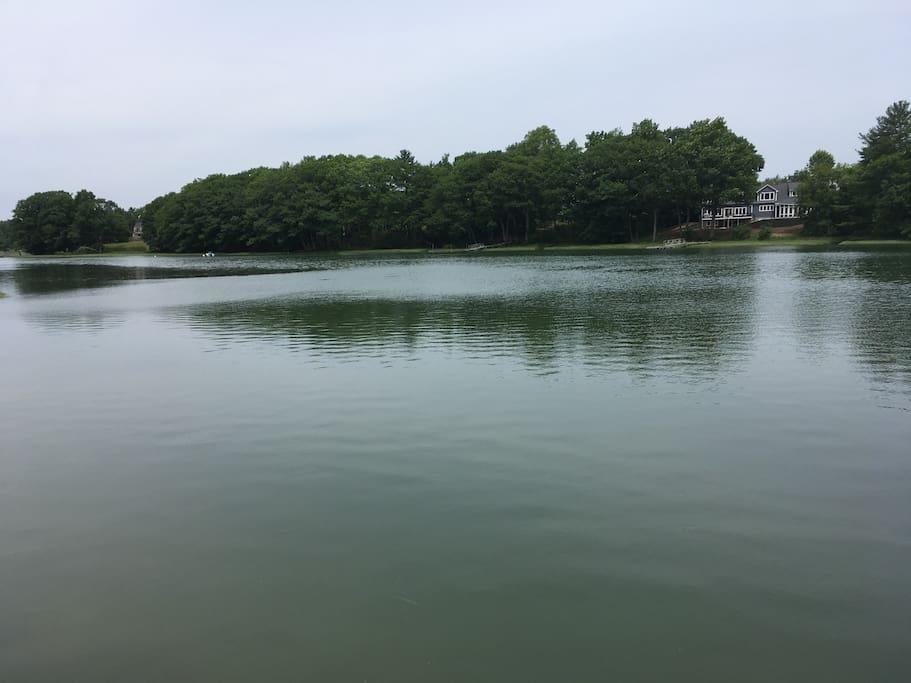 View across river
