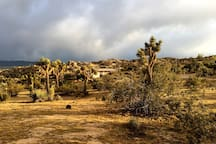 The Cabin! Nestled Amongst the Boulders and Joshua Trees.