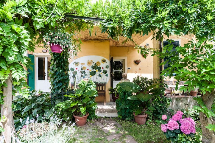 4 Lush green with private bath 10 min from airport - Pisa - Penzion (B&B)