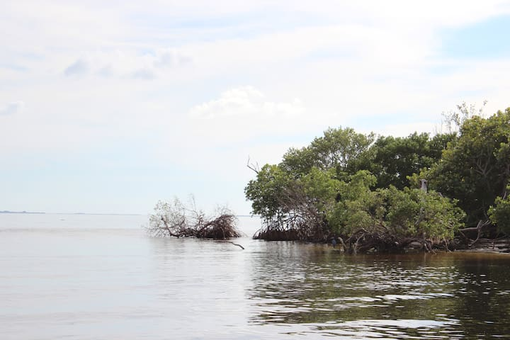 Bokeelia Island House/Tarpon Fishing/Kayaking - Bokeelia - Rumah