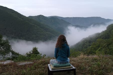 TempleStay 4 , Hiking & Meditation ! - Kawachinagano-shi