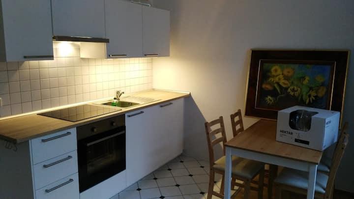 gemütliches Neustadt-Appartement
