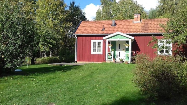 Charming house with wonderful Swedish nature