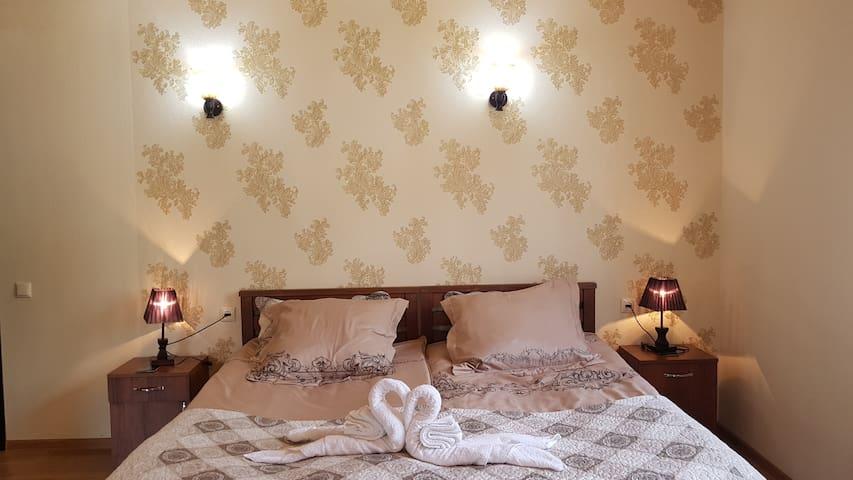 Privet room in Kazbek view guest .(mesame 4ani)