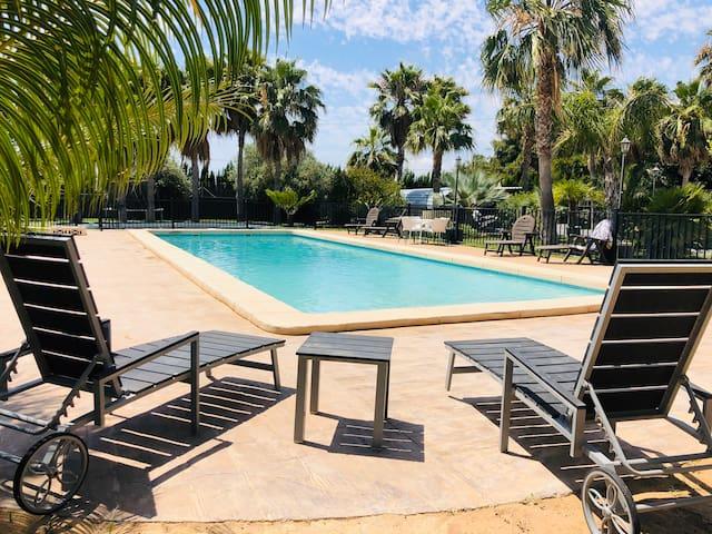 Garden resort elche  casa N1
