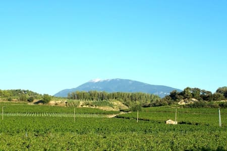 Gite à Vaison la Romaine au milieu des vignes - Vaison-la-Romaine