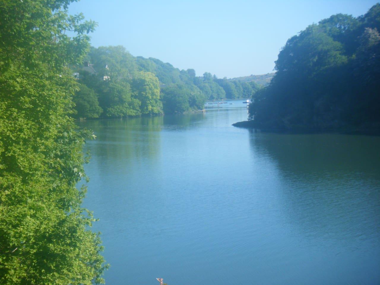 River Teifi