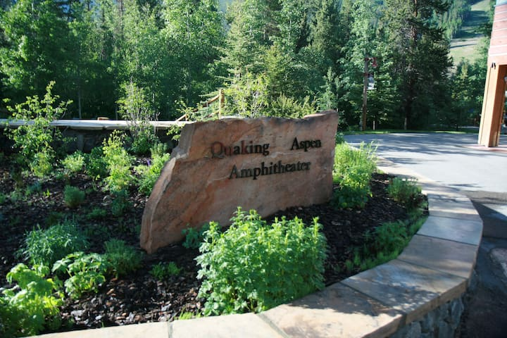 Quaking Aspen amphitheater