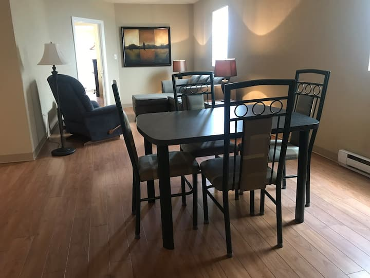 C3 Large unshared 1 Queen bed apartment downtown