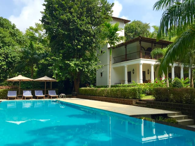 Villa with huge pool in tropical private gardens - Assagao